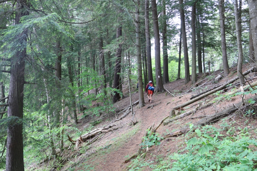 Hiking along the slope of the esker at Lake Massawepie. Photo: Molly McMasters
