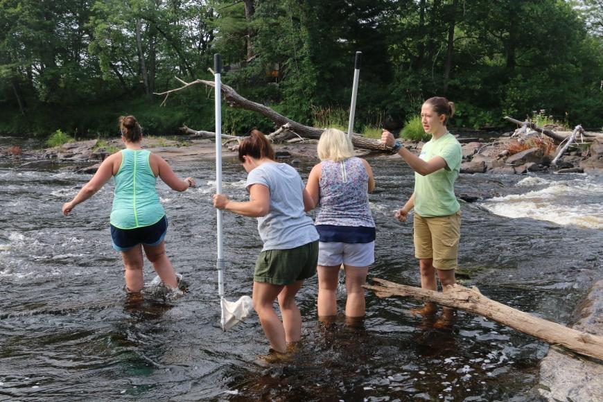 Teachers sample for macroinvertebrates in the Grasse River.
