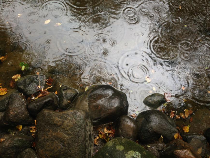 Ripple in Still Water. Photo by Jay Fuhrman.