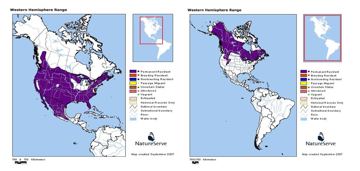 Lynx and bobcat range maps