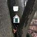 Fairy house on the SUNY Canton trail