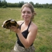 Blanding's turtle captured after nesting in field.